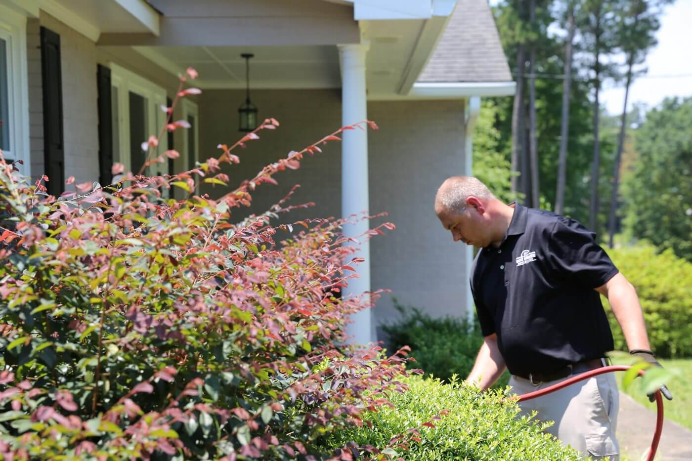Bug House employee working on pest control services