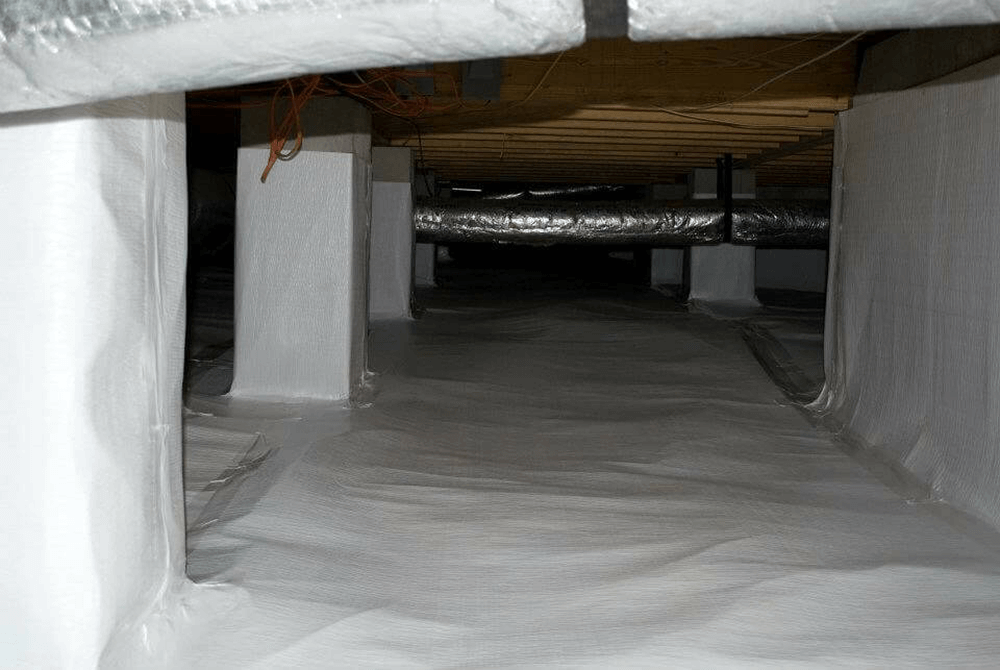 4 Signs that You Need an Encapsulated Crawl Space