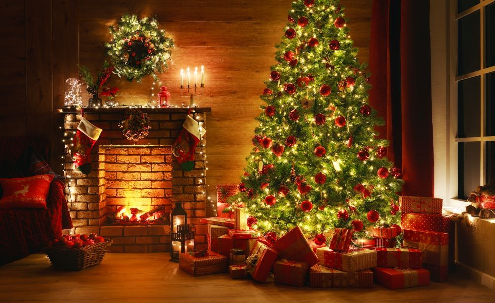 How to Prevent Christmas Tree Bugs from Ruining Your Holiday