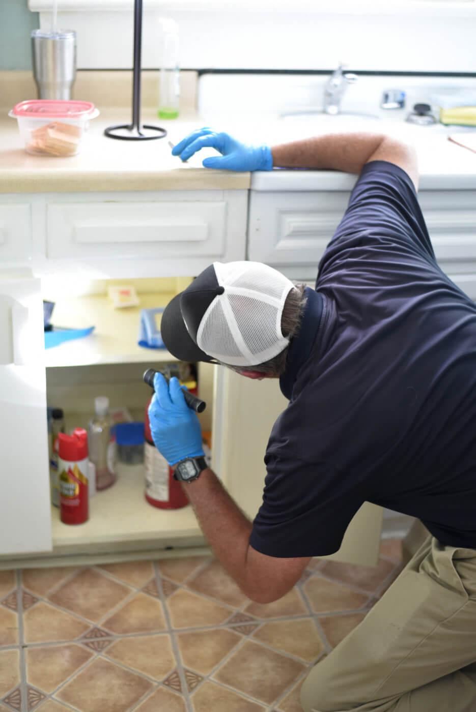 Carrollton pest control worker