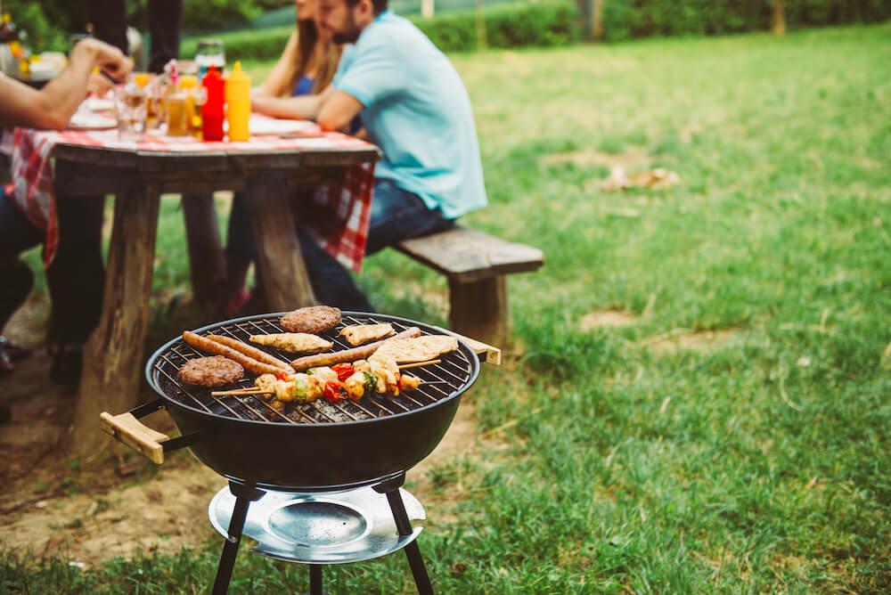 Checklist for Enjoying a Bugless Backyard BBQ